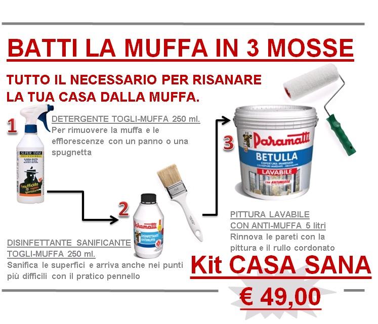 Kit anti muffa casa sana in 3 mosse colori vernici e - Combattere la muffa in casa ...